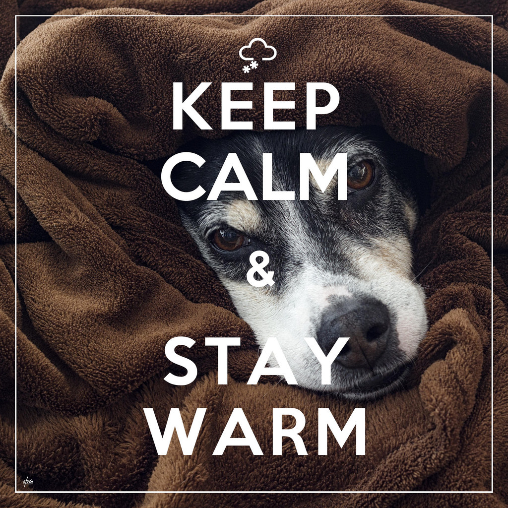 5 Ways To Stay Warm Without Increasing Your Heating Bill